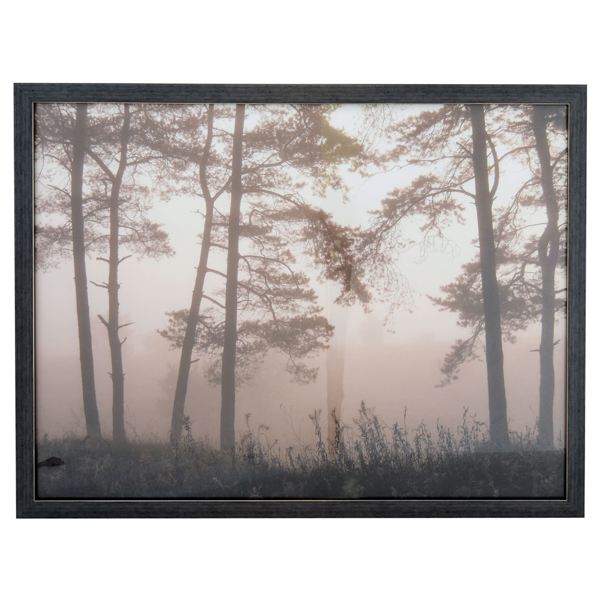 Image of Casa by Art Marketing Autumn Morning Framed Art