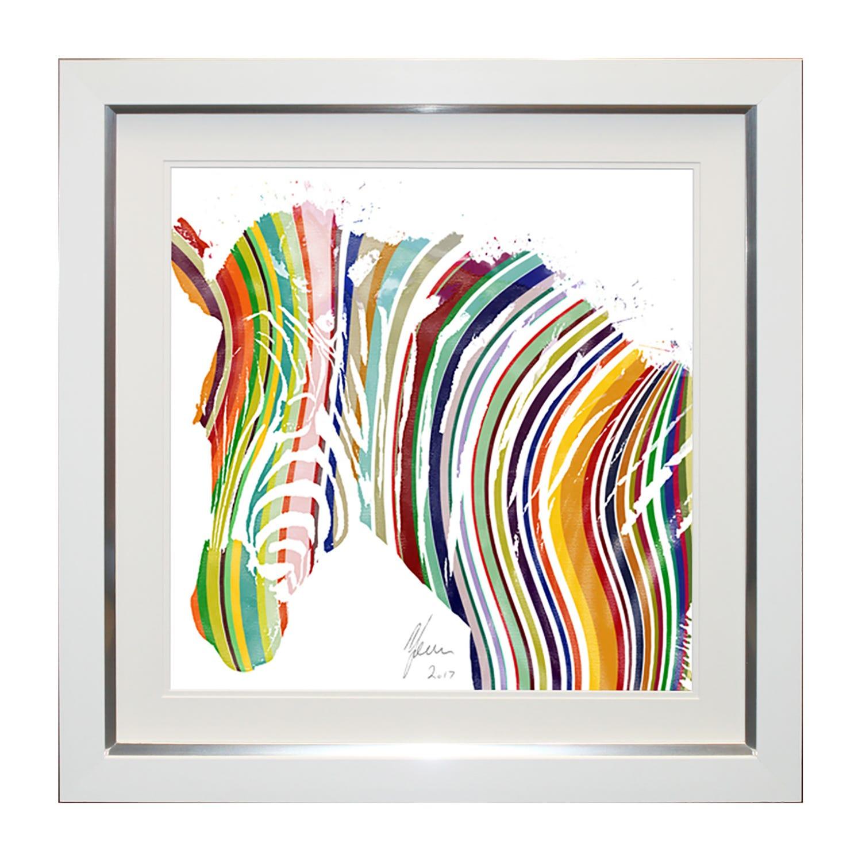 Image of Complete Colour Cc862s Rainbow Zebra (s) Onesize, Multi