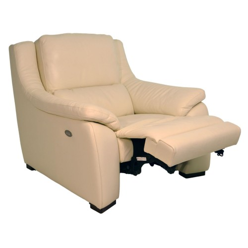 Polo Divani Degano Power Recliner Chair