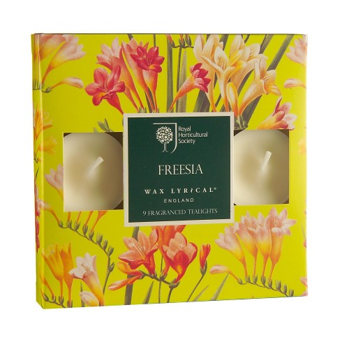 Rhs Tealights Box of 9 Freesia, Yellow