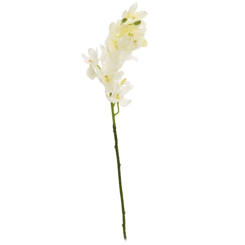 Casa Small Cymbidium Spray X 15f, White
