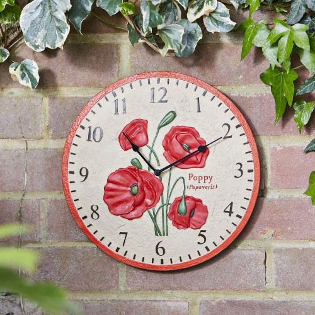 Smart Garden Poppy Wall Clock