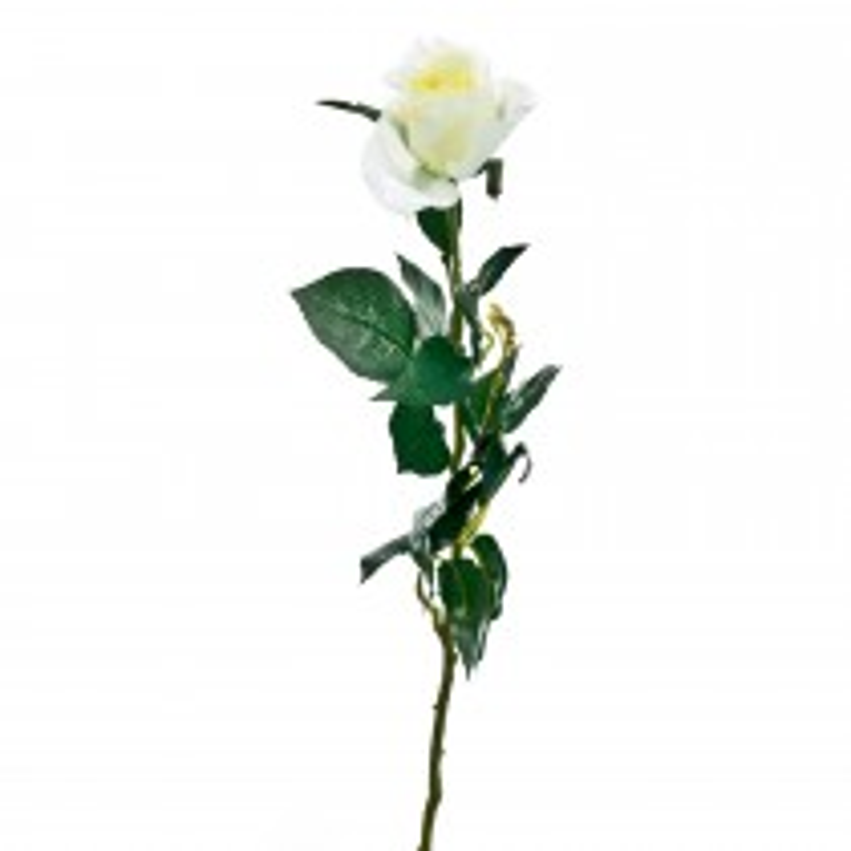 Casa Artificial Single Rose Bud, Cream
