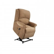 Celebrity Regent Standard Double Power Lift Recliner