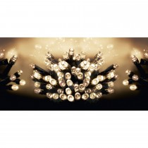 Premier 100 Battery Operated LED Lights, Warm White