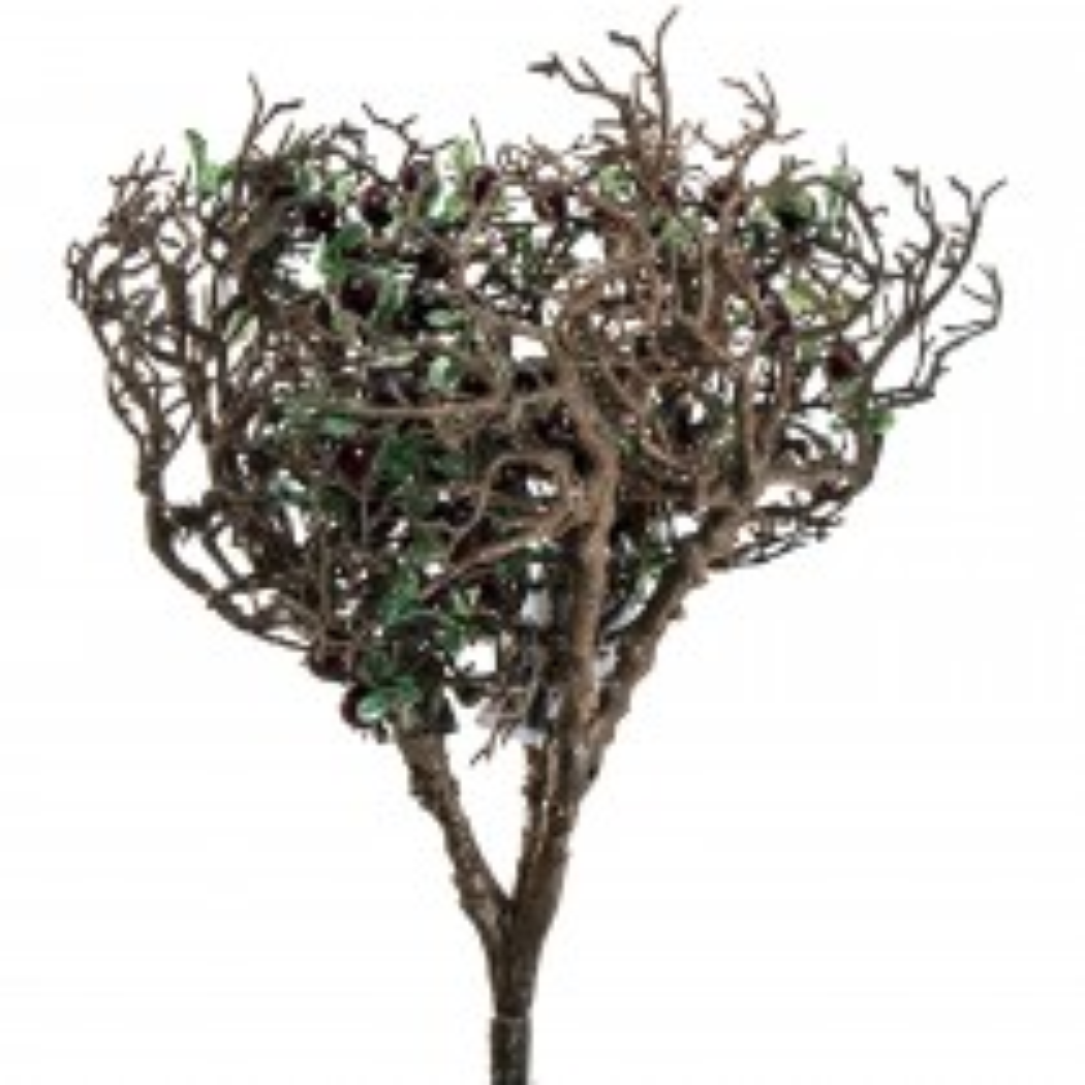 Casa Mini Willow Tree, Green