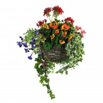 Tree-locate Med Hanging Basket Geranium Summer Mix, Mixed