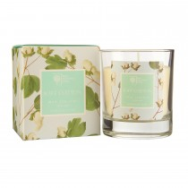 Rhs Scented Wax Filled Glass Soft Cotton, Blue