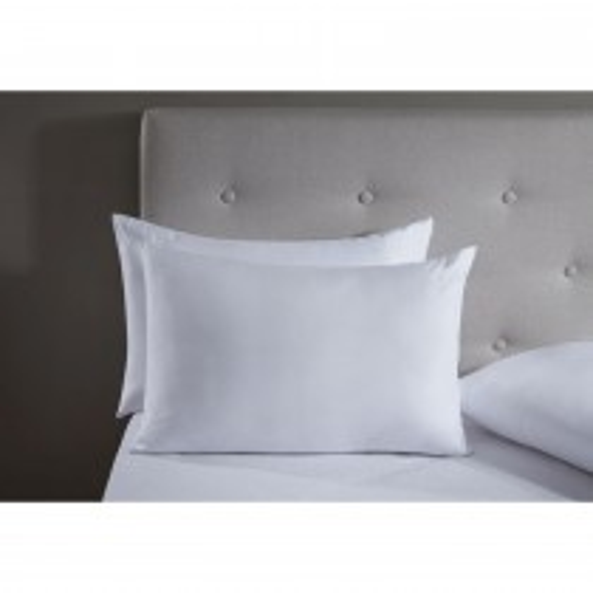 Rectella Anti Allergy Pillow Pair, White