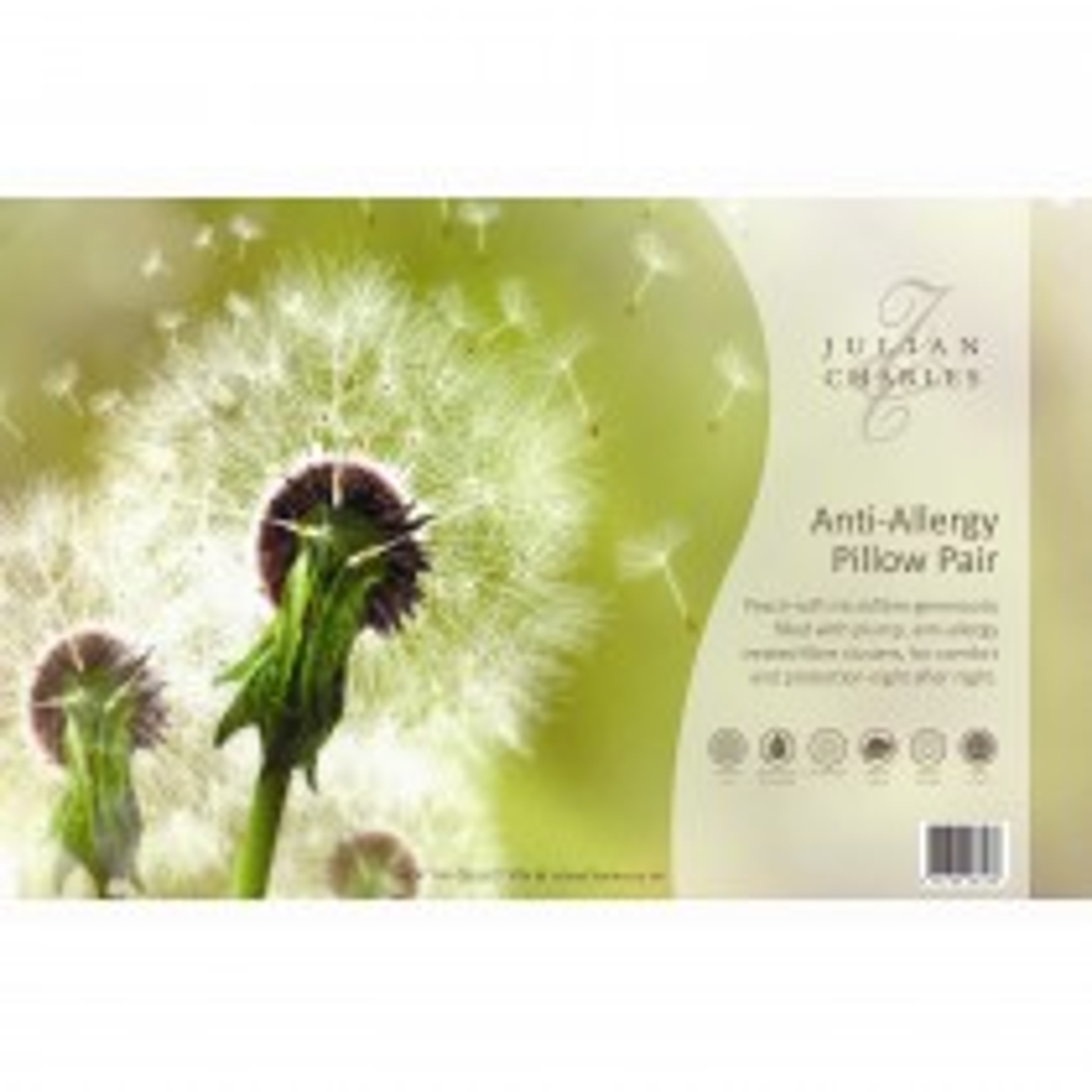 Rectella Anti-Allergy Pillow Pair