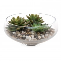 Casa Cactus In Glass, Green