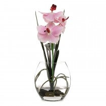 Casa Vanda Orchid In Glass, Soft Pink