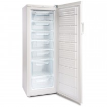 Ice King RZ245AP2 Upright Freezer