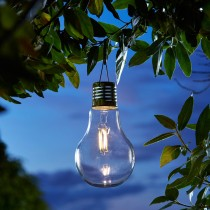 Smart Garden Eureka! Retro Lightbulbs