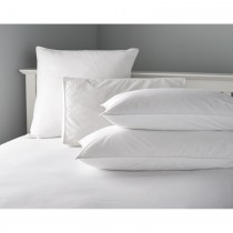 Casa Microfibre Pillow Pair 50x75cm White
