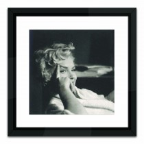 Brookpace Lascelles Marilyn Monroe, Black/white