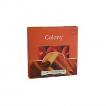 Colony Tealights Cinnamon