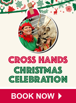 Leekes Cross Hands Christmas Celebration