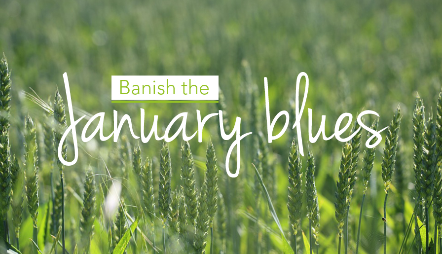Banish the January blues