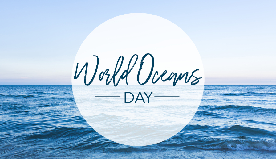 Clean It Up for World Oceans Day