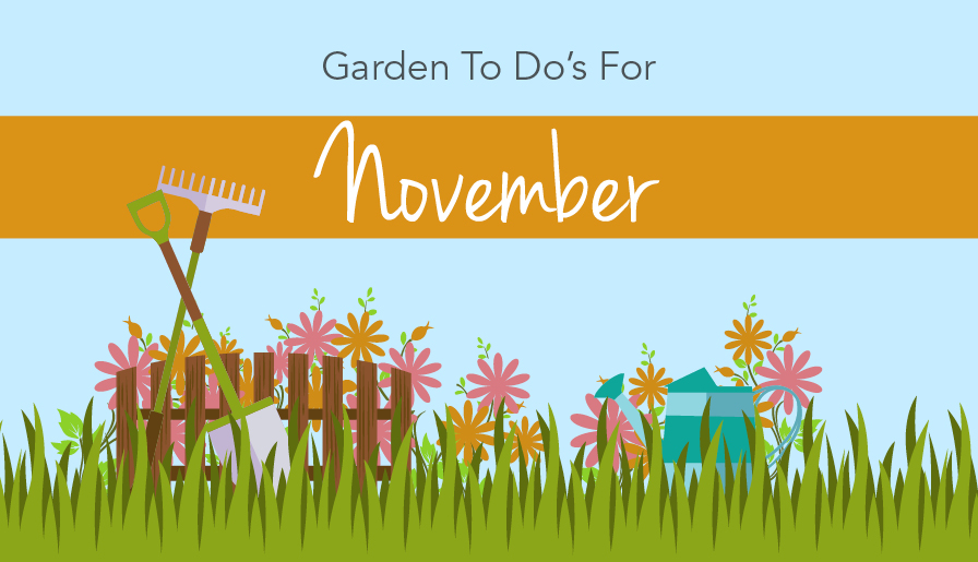 Outdoor To Do's for November