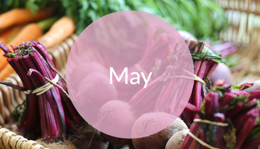 Seasonal Bites- May